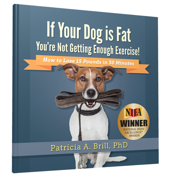 If Your Dog Is Fat